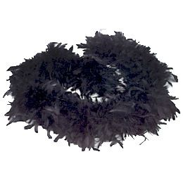 Halloween Party Wear Black Feathered Boa Image