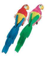 """Cinco de Mayo Decorations 12"""" Feathered Parrot Image"""