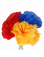 "Cinco de Mayo Decorations Chayo's Flowers (10"") Image"