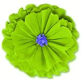 Cinco de Mayo Decorations Rachel's Lime Green Flower Image