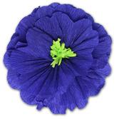Cinco de Mayo Decorations Rachel's Royal Blue Flower Image