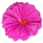 Cinco de Mayo Decorations Rachel's Hot Pink Flower Image