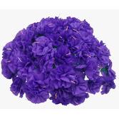 Cinco de Mayo Decorations Purple Carnations Image
