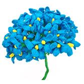 Cinco de Mayo Decorations Turquoise Terecitas Flowers Image