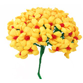 Cinco de Mayo Decorations Yellow Terecitas Flowers Image