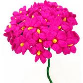 Cinco de Mayo Decorations Hot Pink Terecitas Image