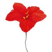 Cinco de Mayo Decorations Small Cornhusk Lily Flower Image