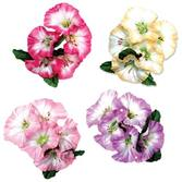 Luau Party Wear Morning Glory Flower Accessory Image