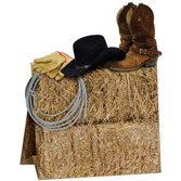 Western Decorations 3-D Western Centerpiece Image