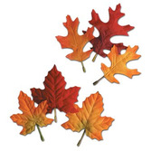 Thanksgiving Decorations Autumn Leaves Image