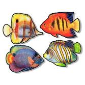 Luau Decorations Coral Reef Fish Cutouts Image