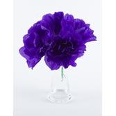 Cinco de Mayo Decorations Purple Chayo's Flowers Image