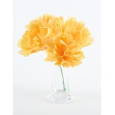 Cinco de Mayo Decorations Yellow Chayo's Flowers Image