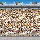 Sports Decorations Upper Stadium Backdrop Image