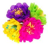 "Cinco de Mayo Decorations Chayo's Flowers (8"") Image"
