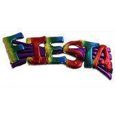 Cinco de Mayo Party Wear Fiesta Pin Image