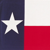 Western Party Wear Texas Flag Bandana Image