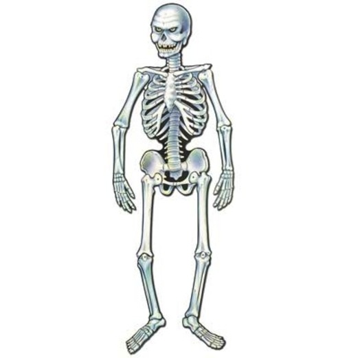 halloween decorations skeleton cutout image