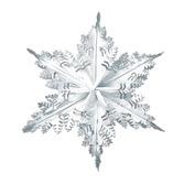 Christmas Decorations Silver Metallic Winter Snowflake Image