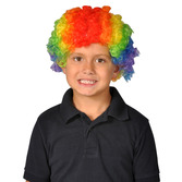 Birthday Party Party Wear Rainbow Clown Wig Image