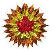 Thanksgiving Decorations Fall Leaf Fan Burst Image