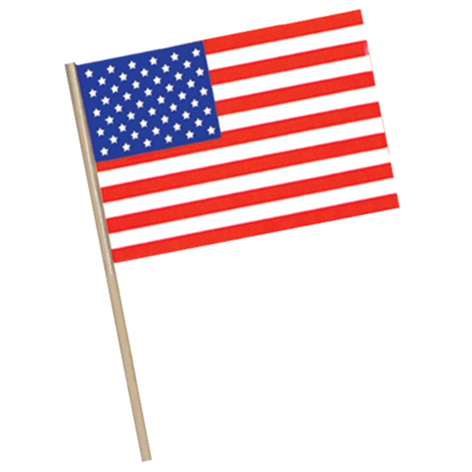 """4th of July Decorations 4""""x 6"""" Plastic  American Flag Image"""