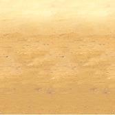 Western Decorations Desert Sand Backdrop Image