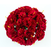 Cinco de Mayo Decorations Red Carnations Image